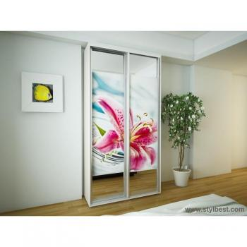 Шкаф-купе FLASHNIKA Эконом №2 (двери фотопечать вставки зеркало)