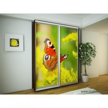 Шкаф-купе FLASHNIKA Эконом №6 (двери фотопечать)