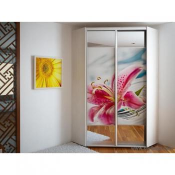 Угловой Шкаф-купе FLASHNIKA Эконом №32(двери фотопечать вставки зеркало)